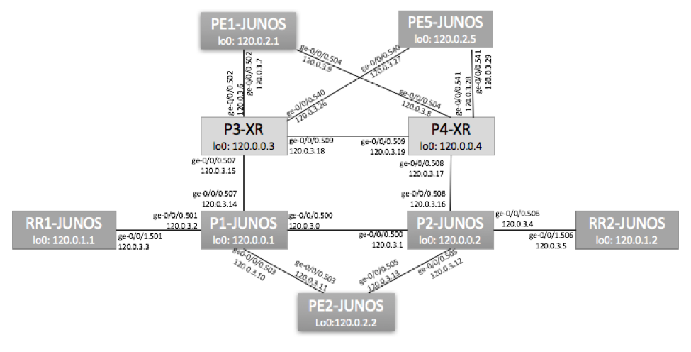 Juniper VLAN-Based EVPN Topology