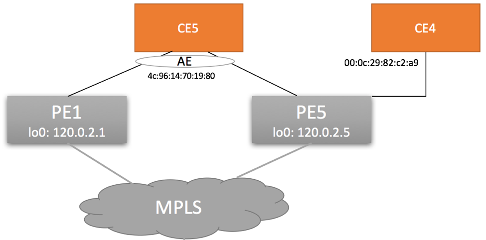 EVPN MPLS Type 1 For Topology Diagram (RFC 7432 Explained)
