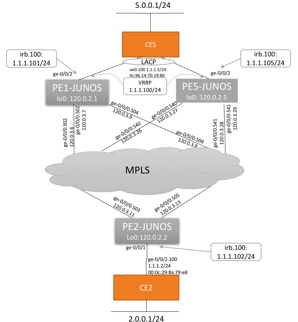 EVPN Type 5 Diagram