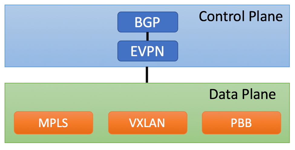 EVPN Control and Data Planes